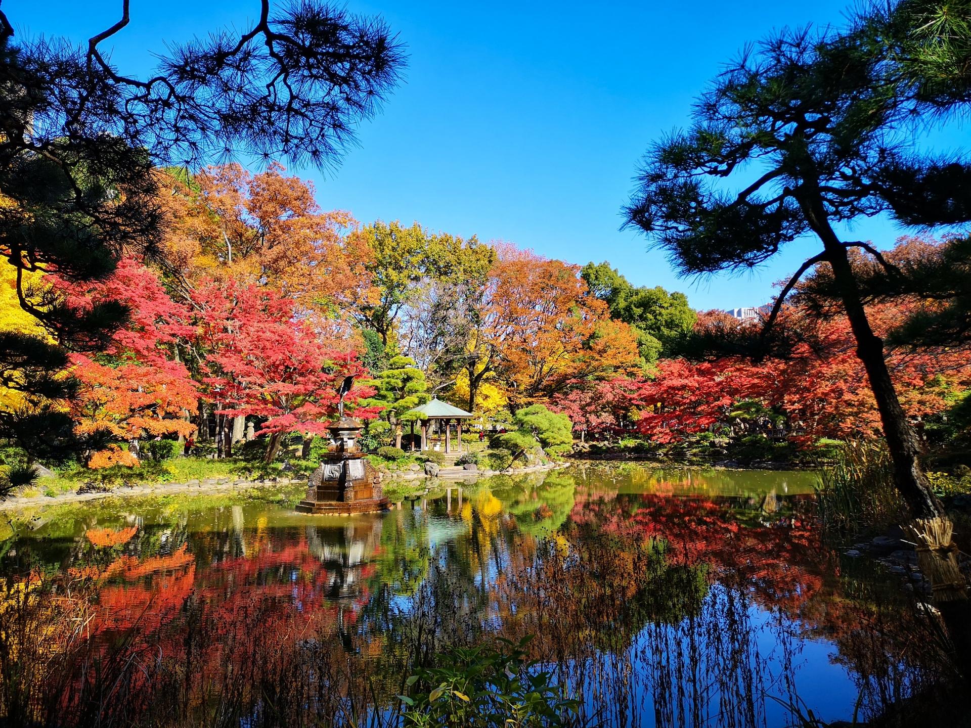 日比谷公園秋